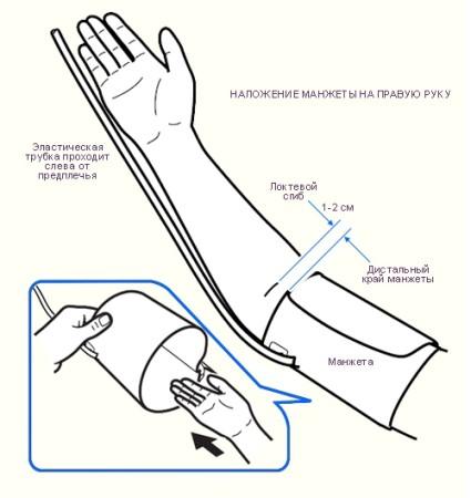 На какой руке меряют давление правильно?