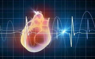 Почему возникает нарушение (замедление или ускорение) сердечного ритма, методы лечения