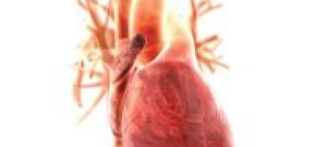 Cердечный цикл: Фазы сердечного цикла