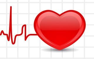 Что лучше провести при проблемах с сердцем: ЭКГ или УЗИ?