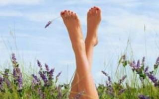 Варикоз на ногах чем лечить
