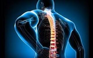 Симптомы и лечение остеохондроза грудного отдела позвоночника, применение медикаментов, ЛФК и массаж