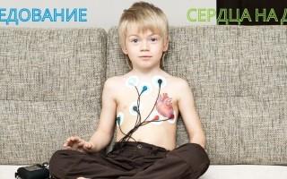 ЭКГ и ЭХО: в чем заключается разница и что лучше, если обследуется сердце?