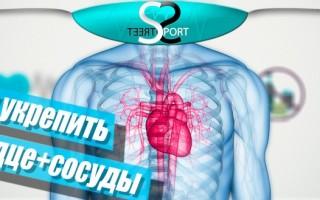 Гимнастика для сердца и сосудов
