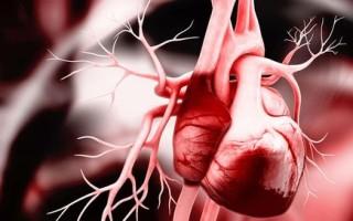 Что такое порок сердца