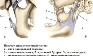 Что из себя представляет воспаление челюстного сустава, характерные симптомы и методы лечения