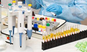Проведение иммунологических исследований: показания, нормы и отклонения