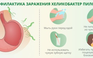 Назначение анализа крови на хеликобактер пилори, расшифровка результатов, норма, при каких состояниях показан?