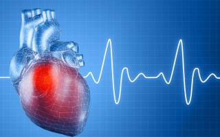 Что такое электросистолы сердца