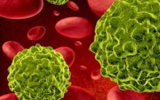 Что означают показатели анализа крови на СА 19-9? Определение нормы и отклонений