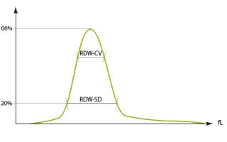 Показатели RDW в анализах крови, расшифровка, причины повышения или понижения индекса анизоцитоза
