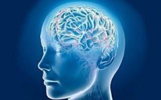Ангиоспазм сосудов головного мозга лечение