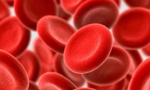 Что необходимо знать о пониженном гемоглобине каждому человеку?