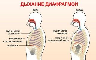 Гимнастика при стенокардии сердца