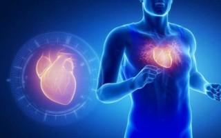 Гипертрофия сердца у спортсменов