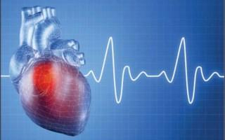 В чем заключается механика автоматизма сердца: центры регуляции ритма